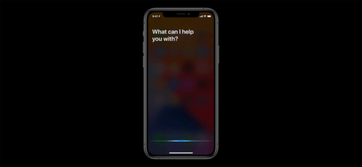 Full screen Siri
