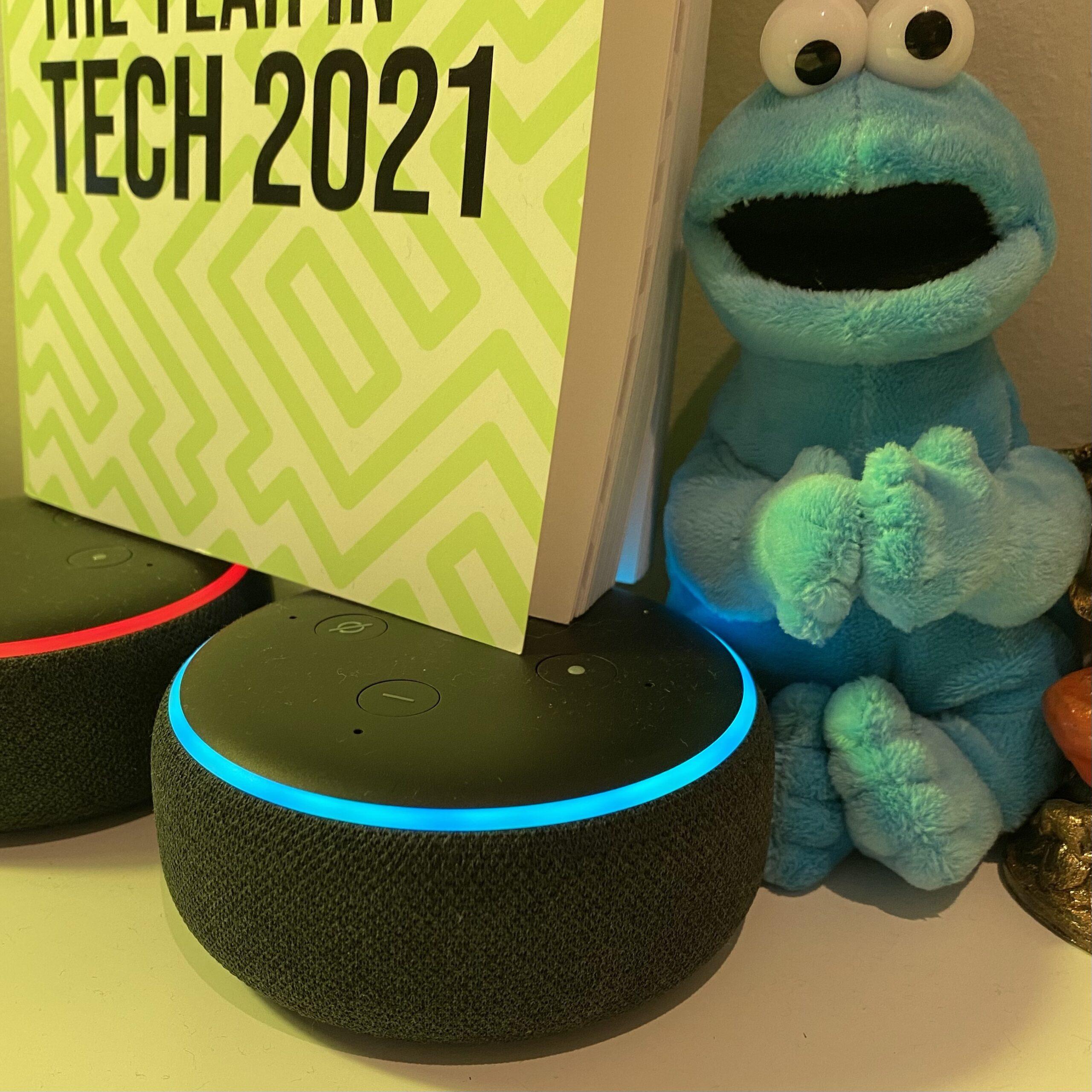 Alexa skill or google action